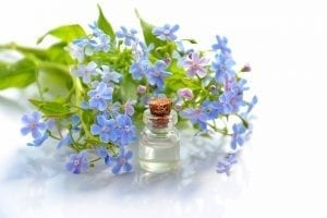 Cosmetic Oil Essential Oil  - Mareefe / Pixabay